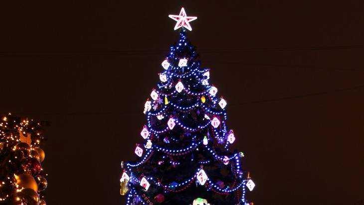 В Брянске главную новогоднюю ёлку выберут интернет-голосованием