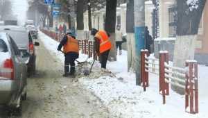 Жителей Брянской области предупредили о сильных снегопадах