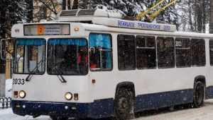 В Брянске 18-летний студент БГУ разбил голову в троллейбусе № 3