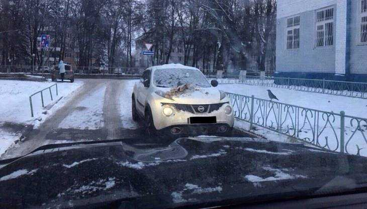 В Брянске машину автохама забросали очистками за парковку