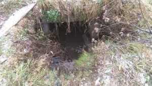 Брянские иждивенцы испугались ямы с водой возле больницы