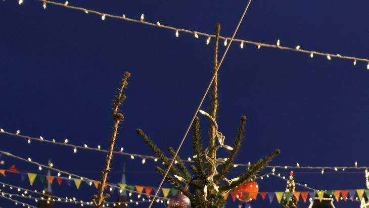Впервые в Брянске новогодними огнями засияет каштановая аллея