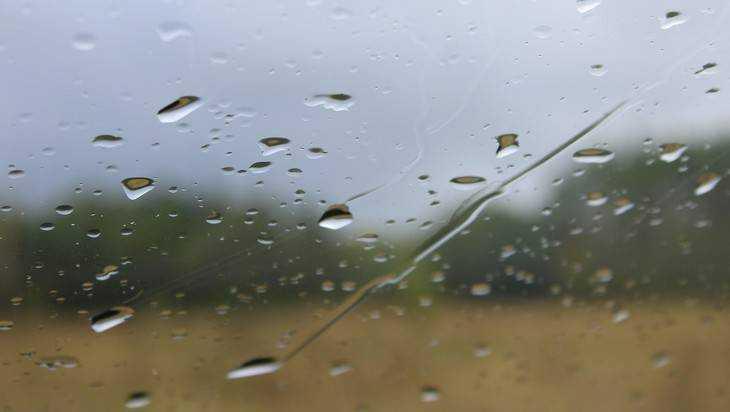 На Брянскую область обрушатся ливень и сильный ветер
