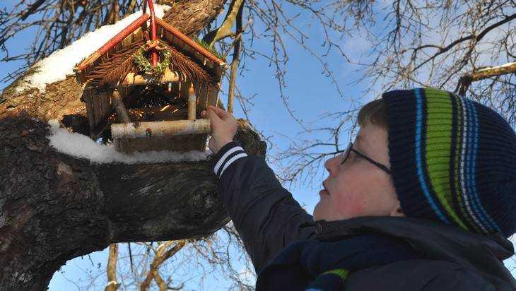 В Брянской области наградили победителей фотоконкурса Клинцовской епархии