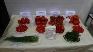 Брянские зеки на Новый год накормят сокамерников свежими овощами
