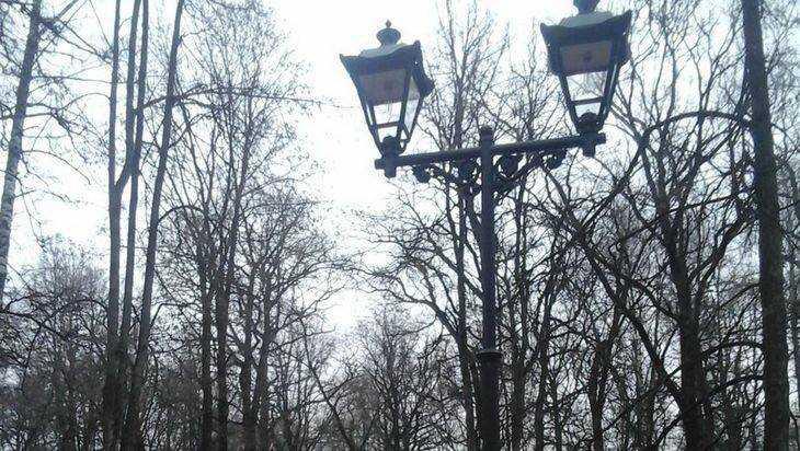 В брянском парке Пушкина установили новые фонари