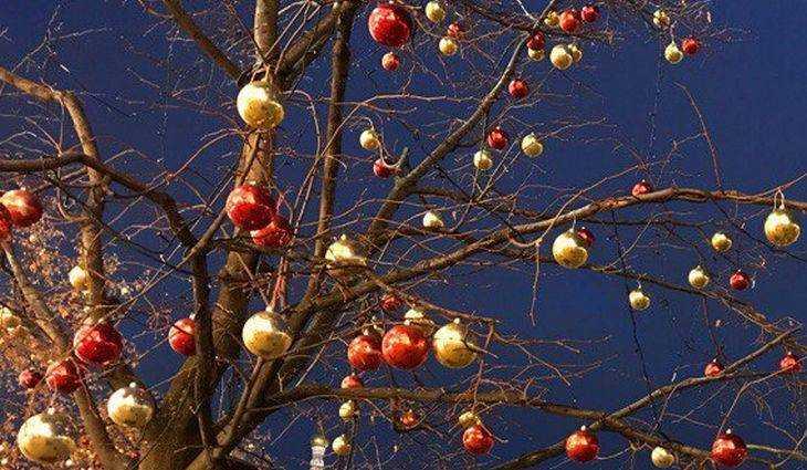 В брянских школах родители взбунтовались против Деда Мороза