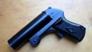 В Брянске мужчину осудили за сигнальный пистолет для украинцев