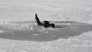 Сотрудники МЧС спасли провалившегося под лёд брянского рыбака