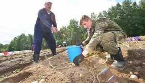 Торговля между Брянской областью и Белоруссией выросла на 26 процентов