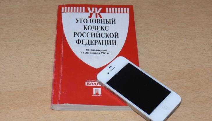 Жителя Брянска обвинили в краже найденного в сквере телефона