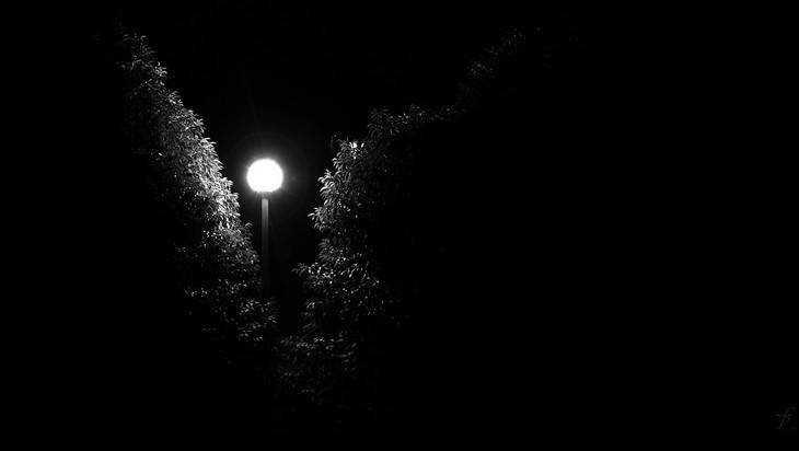 Жителя посёлка Комаричи возмутил мрак на неосвещённой Аллее Героев