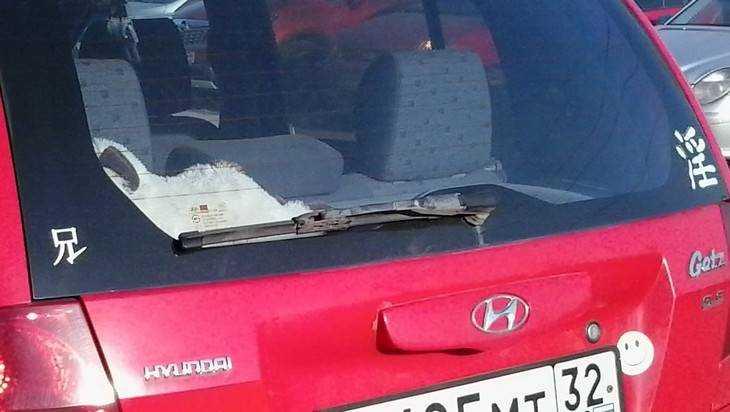 В Сураже на водителя наехал его собственный автомобиль Hyundai