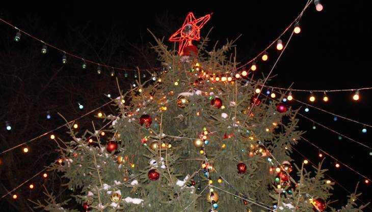 Власти Брянска попросили дать новогодний бой вандалам за 18 снеговиков