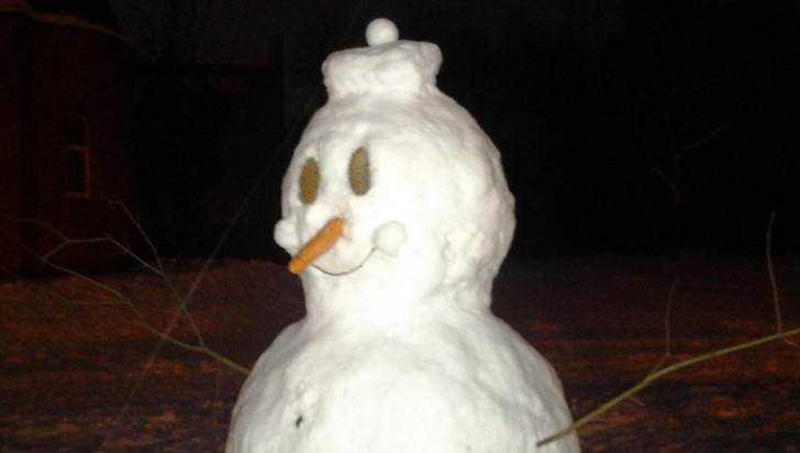 Первые зимние морозы придут в Брянскую область после Рождества