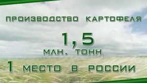 Минсельхоз России назвал Брянскую область бесспорным лидером