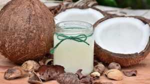 Россия утвердила ГОСТ на кокосовые орехи