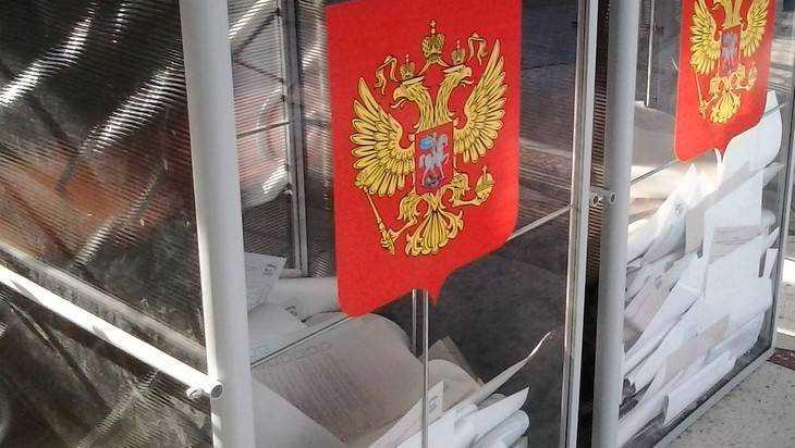 Голоса на выборах президента в Брянской области подсчитает компьютер