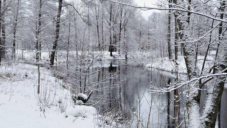 Брянск заметет снегом