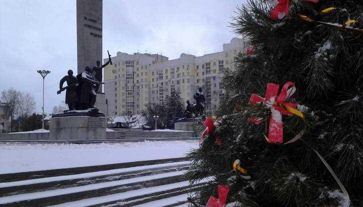 На Брянскую область 18 января обрушатся снегопады и метели