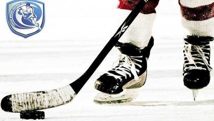 Брянцев пригласили на хоккейный турнир «Северное сияние 2018»