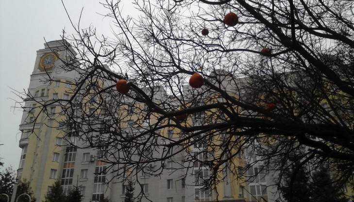 МЧС предупредило о гололеде и мокром снеге в Брянской области