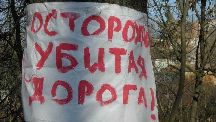 Жители Белых Берегов попросили Путина отремонтировать дорогу