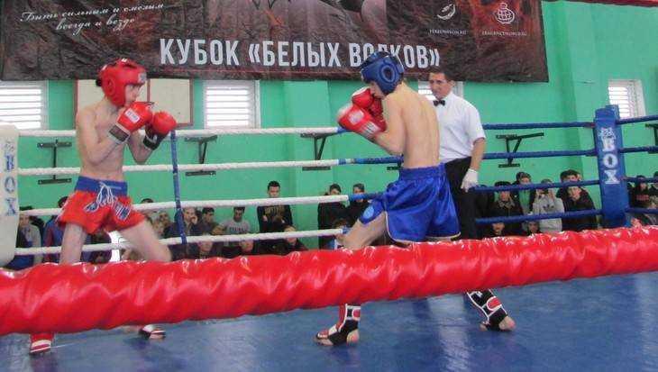 В Локте завершился зрелищный чемпионат ЦФО по кикбоксингу