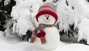 В Брянске необычные снеговики сразятся за победу в зимнем конкурсе