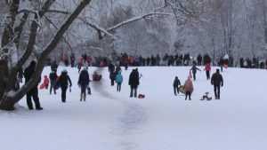 Жителей Брянска ГИБДД предупредила об опасных ледяных горках