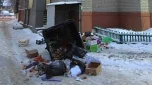 Житель Брянска пожаловался на мусор у магазина на улице Пушкина