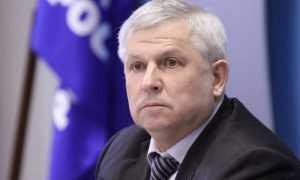 Кидяев: Сбор валежника для личных нужд граждан станет свободным и бесплатным