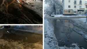 В центре Брянска нашли незамерзающее грязевое озеро