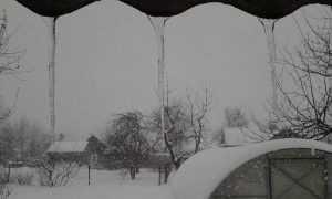 На Брянщину 10 февраля вернётся оттепель с мокрым снегом