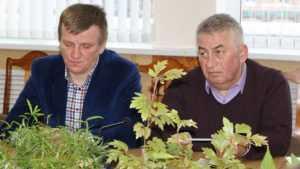 В приватизации Центрального рынка Брянска нашли признаки уголовщины