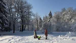 В Брянской области МЧС по SMS  предупредило о лютых морозах