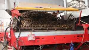 Погарская фабрика познакомила 10 стран мира с брянским картофелем