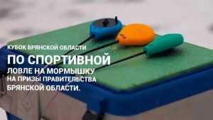 В Брянском районе сразятся любители спортивной рыбной ловли
