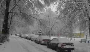На Брянщине МЧС объявило предупреждение из-за снегопадов 1 марта