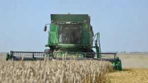 Брянские сельхозпроизводители получат 11,5 миллиарда рублей субсидии