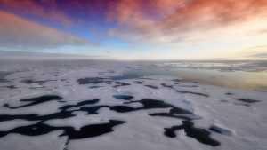 Климатологи назвали страны, которые исчезнут из-за глобального потепления