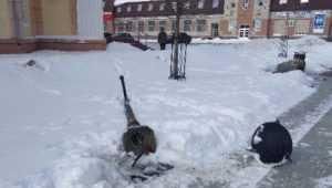 В центре Брянска на бульваре Гагарина рухнул фонарь