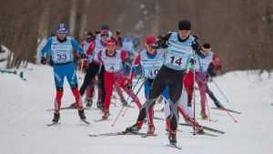 В лыжном марафоне в Воронеже победил спортсмен из Брянска