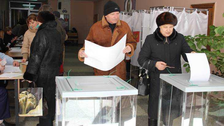 Белорусы нарушений на выборах в Брянской области не выявили