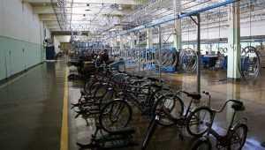 В Жуковке брянцы и белорусы обсудят развитие велосипедного производства