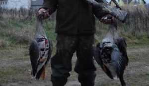 Начало брянского сезона охоты из-за холодов перенесли на 14 апреля