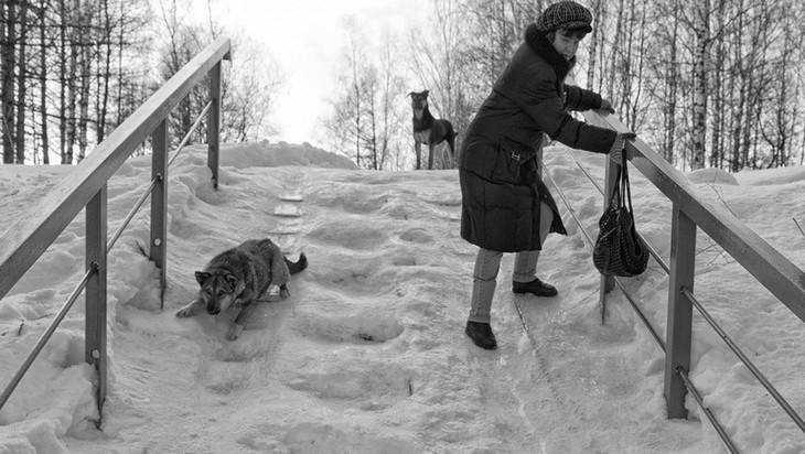 Брянцы пожаловались на ледяную неприступность поликлиники № 1