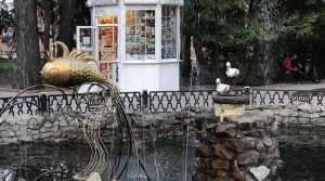 В Брянске в фонтан Круглого сквера запустили золотую рыбку