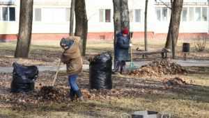 Жителей Брянска призвали навести порядок на улицах в Чистый четверг