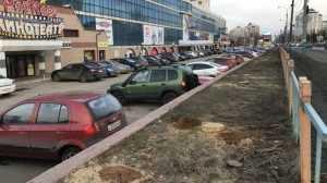 Власти Брянска объяснили подлое уничтожение аллеи у ТРЦ «Мельница»